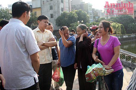 Can xu ly triet de viec xay dien tho trai phep o go Kim Chau - Anh 2