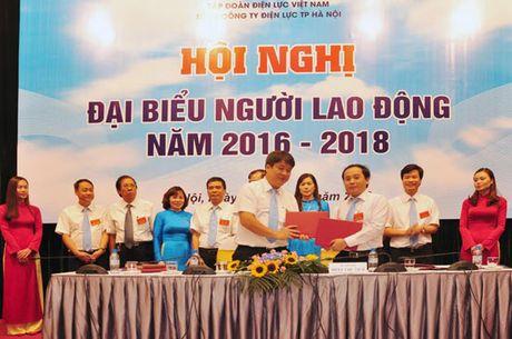 EVN HANOI to chuc Hoi nghi Dai bieu Nguoi lao dong nam 2016 - Anh 2
