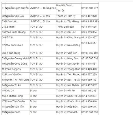 Quang Nam cong khai 19 duong day nong tiep nhan tin tham nhung - Anh 1