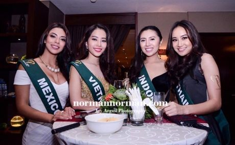 Dien vay giong Pham Huong, Nam Em gay chu y tai Miss Earth 2016 - Anh 6