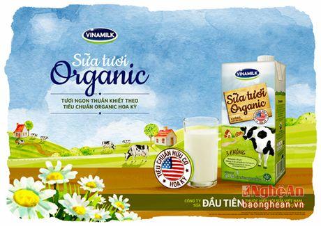 Khoe dep voi thuc pham Organic cao cap - Anh 2