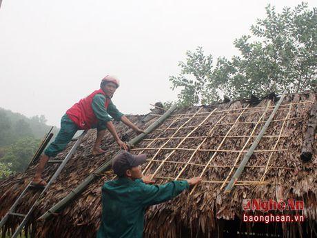 Hoi Chu thap do dien tap phong chong bao lut - Anh 2