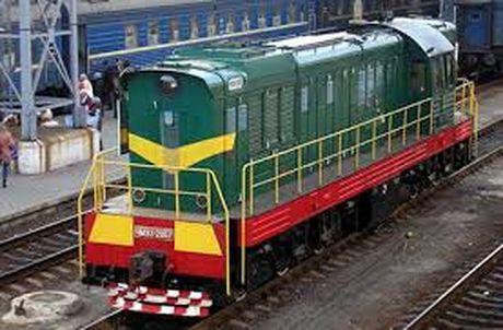 SMH Rail tim kiem co hoi hop tac tai Viet Nam - Anh 1