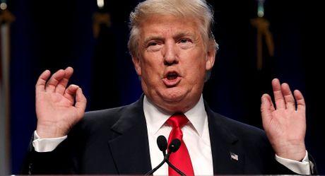Trump da tung 'nhin trom' hoa hau thay do - Anh 1
