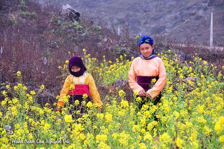 10 dieu khong nen bo lo khi du lich bui Ha Giang - Anh 10