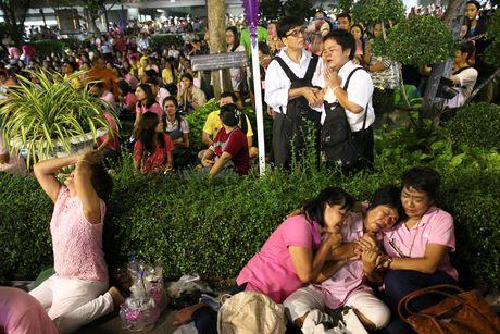Thai Lan se de tang quoc vuong trong mot nam - Anh 1