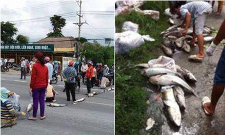 Nguoi dan mang ca chet chan Quoc lo, de nghi chinh quyen lam ro nguyen nhan - Anh 1