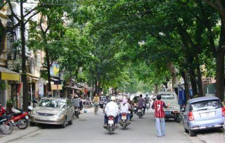 Ha Noi: Vuong mac giai phong mat bang pho Nguyen Dinh Chieu - Anh 1