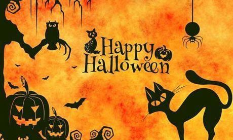 Le hoi Halloween va nhung su that chua han ai cung biet - Anh 6