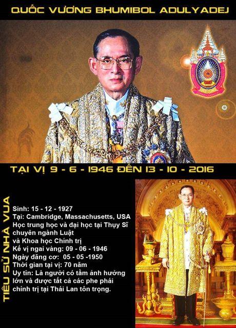 Infographic: Quoc vuong Bhumibol Adulyadej - Chan dung mot vi vua dan yeu kinh - Anh 1
