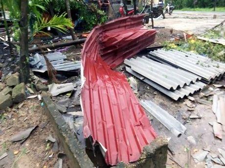 Loc xoay kinh hoang o Quang Tri - Anh 3
