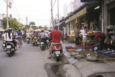 Cho tu phat cang dep cang... bay hay - Anh 1