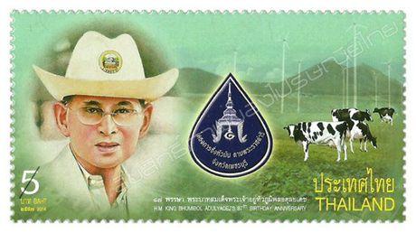 Nghe nguoi Thai ke ve cuoc doi Quoc vuong tren tem buu chinh - Anh 9