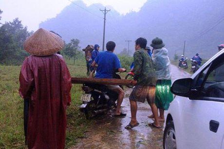 Quang Binh: Khoi to vu lam tac tan cong kiem lam, tau tan go lau - Anh 2