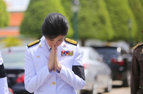 Bien nguoi xep hang dai cho linh cuu quoc vuong Thai Lan - Anh 2