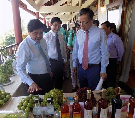 San xuat luong thuc va nong nghiep phai thay doi do bien doi khi hau - Anh 1
