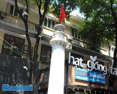 Ngon hai dang chu quyen giua long TP Ho Chi Minh - Anh 1
