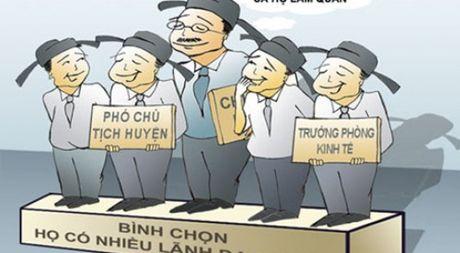 Can phai sua luat de khac phuc nan 'con ong chau cha' trong bo nhiem can bo - Anh 1