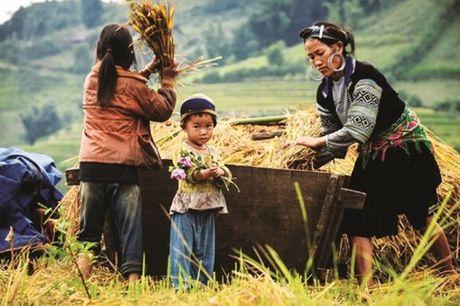 Tung bung le hoi Mu Cang Chai, Yen Bai - Anh 3