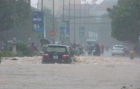 Quang Binh: Luong mua o Dong Hoi len den 770 mm - Anh 1