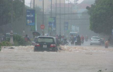 Quang Binh: Luong mua o Dong Hoi len den 770 mm - Anh 2
