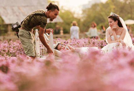 Thao nguyen hoa tuyet dep de chup anh cuoi giua Ha Noi - Anh 1
