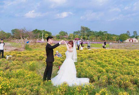Thao nguyen hoa tuyet dep de chup anh cuoi giua Ha Noi - Anh 9