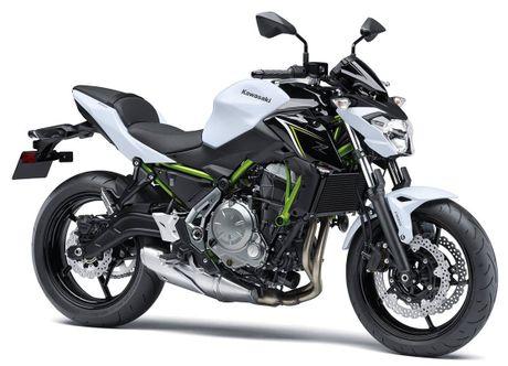 'Nha hang' Kawasaki Ninja 650 sportbike va Z650 naked sport 2017 - Anh 2