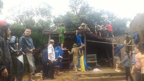Canh hoang tan tai Quang Binh sau khi lu rut - Anh 7