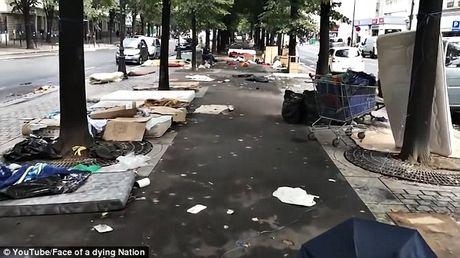 Canh nguoi ti nan va vat tren duong pho Paris - Anh 2
