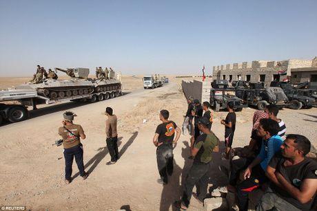 Anh quan doi Iraq chuan bi danh phien quan IS o Mosul - Anh 14