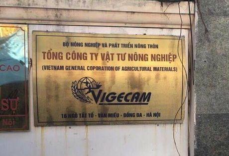 Hang tram ty dong cua nha nuoc tai Tong Cty Vat tu Nong nghiep 'bien' di dau? - Anh 1