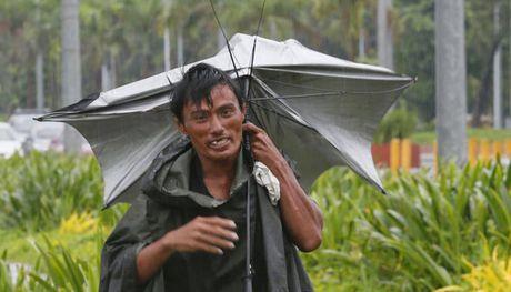Bao Sarika quet qua dao Luzon (Philippines), it nhat 3 nguoi thiet mang - Anh 1
