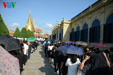 Nguoi dan Thai Lan xep hang dai ca cay so de vieng Vua - Anh 1