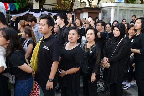 Nguoi dan Thai Lan xep hang dai ca cay so de vieng Vua - Anh 4