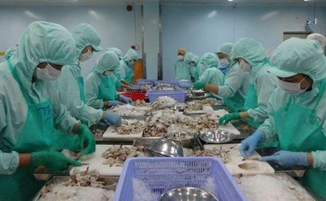 Doanh nghiep thuy san ha 96% ke hoach vi ca chet o mien Trung - Anh 1