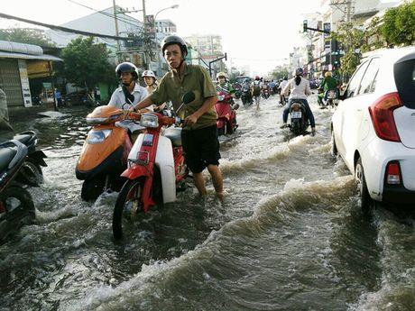 Chon chan, dam nuoc tren duong Huynh Tan Phat - Anh 2