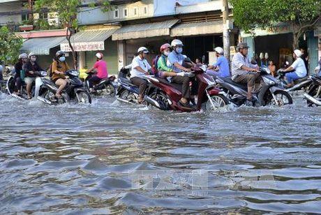 Ngap lut tai TP Ho Chi Minh nhin tu cong tac quy hoach - Bai 4 - Anh 1