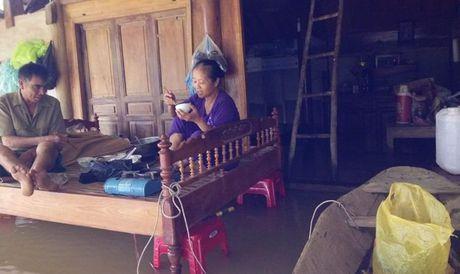 Nhung bua com am anh tai vung ron lu Ha Tinh - Anh 2