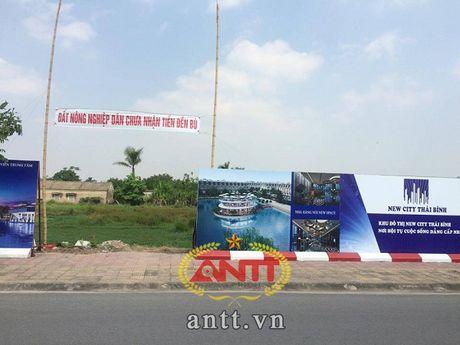 Du an New City Thai Binh: Doanh nghiep 'cuop' dat cua dan? - Anh 1