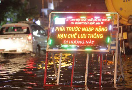 Nguoi Sai Gon phot lo ngap khi trieu cuong cao nhat nam - Anh 10
