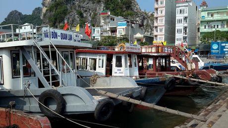 Quang Ninh: Chu dong phong chong sieu bao kep co the do bo vao dat lien - Anh 2