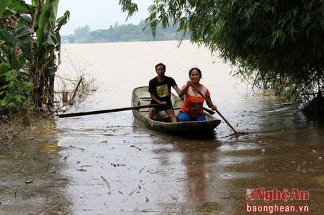 Nuoc lu bao vay nhieu xa cua huyen Thanh Chuong - Anh 4