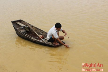 Nuoc lu bao vay nhieu xa cua huyen Thanh Chuong - Anh 5
