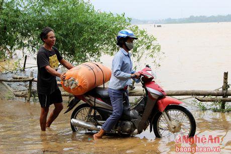 Nuoc lu bao vay nhieu xa cua huyen Thanh Chuong - Anh 8