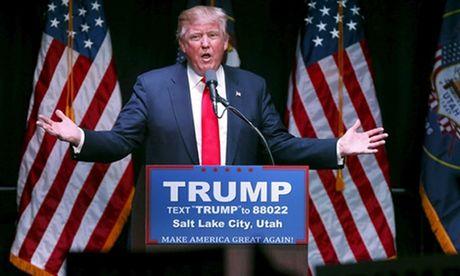 Trump to bau cu tong thong My 'bi sap dat' - Anh 1