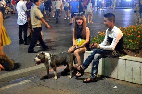 Doan cho du khong ro mom 'dieu hanh' tren pho di bo Ho Guom gay tranh cai - Anh 3
