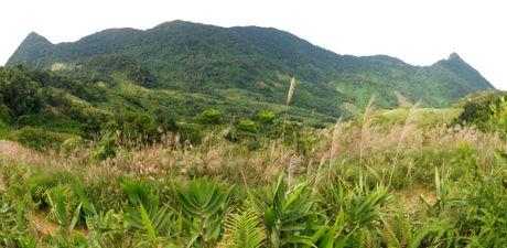 Ve dep hoang so o day nui cao nhat Quang Ngai - Anh 2