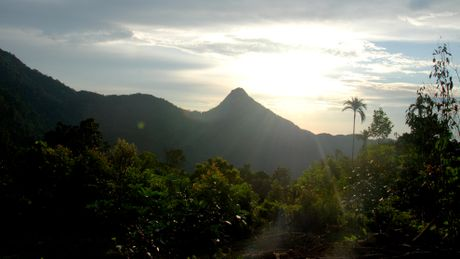 Ve dep hoang so o day nui cao nhat Quang Ngai - Anh 3