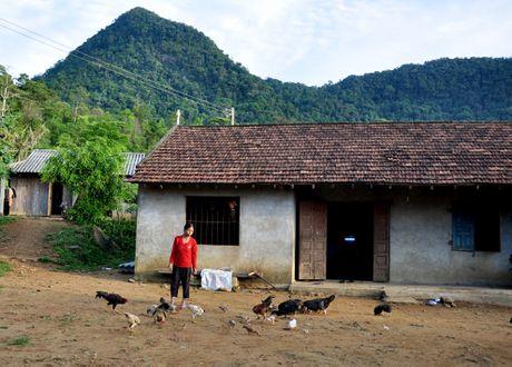 Ve dep hoang so o day nui cao nhat Quang Ngai - Anh 5